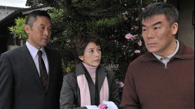 科捜研の女 season11 第10話