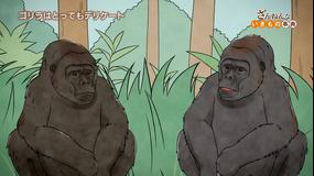 ざんねんないきもの事典 第2シリーズ 第14話