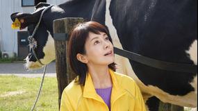 科捜研の女 season20(2020/11/19放送分)第05話