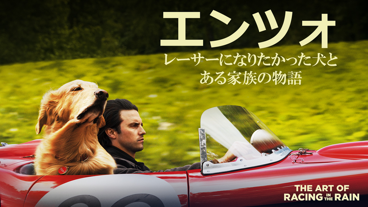 エンツォ レーサーになりたかった犬とある家族の物語/字幕