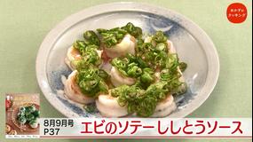 おかずのクッキング 土井善晴の「素材のレシピ・ししとう」/コウケンテツの「関西王道 豚玉」(2021/09/11放送分)