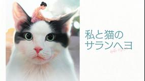 私と猫のサランヘヨ/字幕