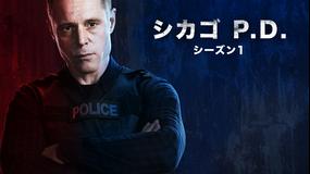 シカゴ P.D. シーズン1/字幕