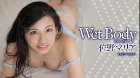 佐野マリア/Wet Body